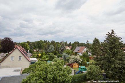 rock Blankenfelde
